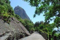 Claudio-Coutinho-Path